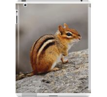Eastern Chipmunk - Ottawa, Ontario iPad Case/Skin