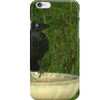 Crow on a bath iPhone Case/Skin