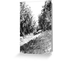 Country Road II Greeting Card