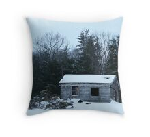 winter desolation Throw Pillow