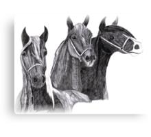 The three kings Canvas Print