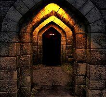 The Darkness  by spottydog06
