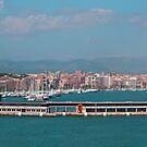 Palma Harbour Panorama by Tom Gomez