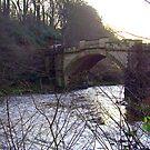 Old Bridge II by Tom Gomez