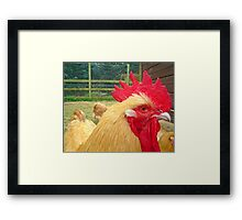 Mohican.. Framed Print
