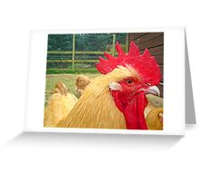 Mohican.. Greeting Card