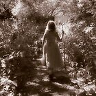Woodland Walk by Jacqueline Baker