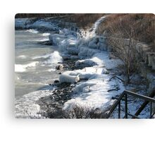 winter's last grip Canvas Print