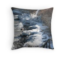 winter's last grip Throw Pillow