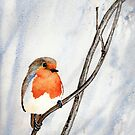 Winter Robin by Val Spayne