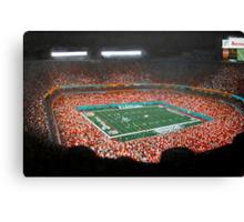miami dolphins stadium Canvas Print