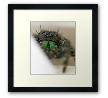 Who Scared Who? Framed Print