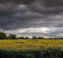 Moody Sky by slimdaz