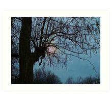 Overcast Evening Sun Art Print