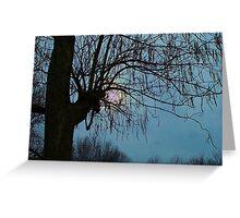 Overcast Evening Sun Greeting Card