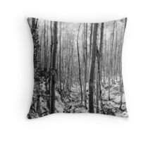 """Pecos Wilderness"" Throw Pillow"