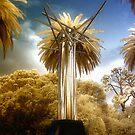 Millenium Tree by Ant Vaughan