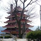 Pagoda on the Mountain by Judi Taylor