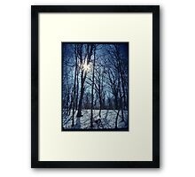 Shining White Framed Print
