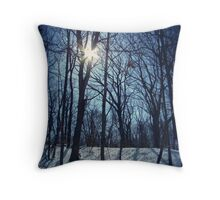 Shining White Throw Pillow
