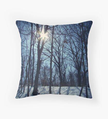 Shining White Throw Pillow