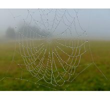 A Home In The Mist... - Web - NZ Photographic Print