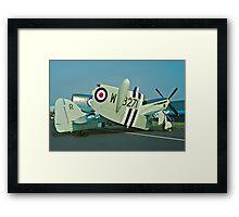 Fairey Firefly AS.5 WB271/R folded Framed Print