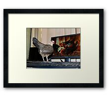 This Is Family Skype Time - Silver-Duckwing - NZ Framed Print