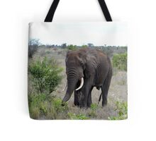 I Hear The African Continent - Elephant - Kruger National Park Tote Bag