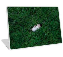 1178. Laptop Skin