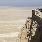 Masada fortress Israel by Moshe Cohen