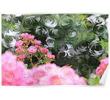 Painterly Pink Wild Roses with Green White Swirls Poster