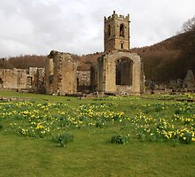 Mount Grace Priory.  by richieh755