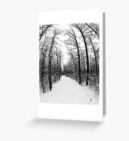 Winter Footpath Greeting Card