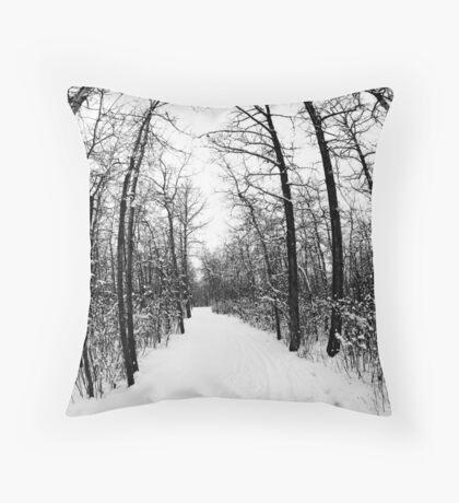 Winter Footpath Throw Pillow