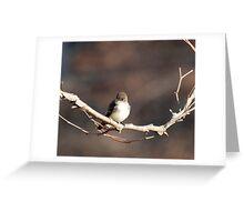Tweety Greeting Card