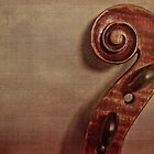 Violin Scroll by Kadwell