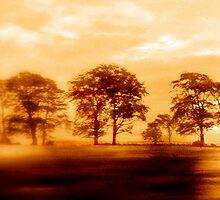 Running Home by Charissa May Borroff