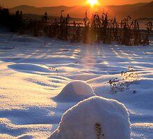 sunset3 by buffaloboy