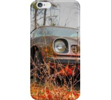 Resting Place For A Z 28 iPhone Case/Skin
