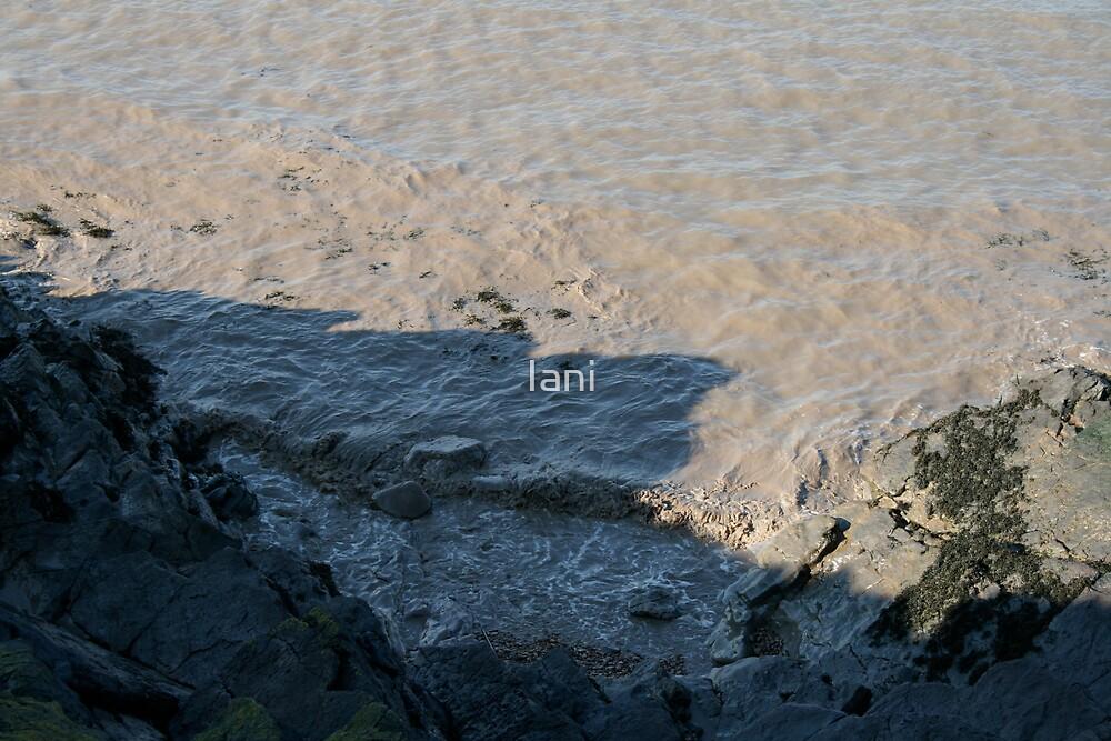 Muddy Waters by Iani