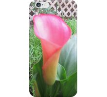 calla lily laughter iPhone Case/Skin