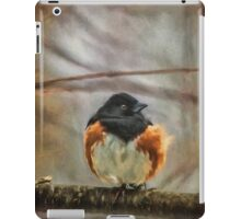 Winter Visitor iPad Case/Skin