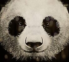 panda eyes by Vin  Zzep