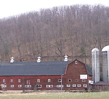 Poultry Barn  by RLHall