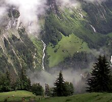 Switzerland in July by taralynn101