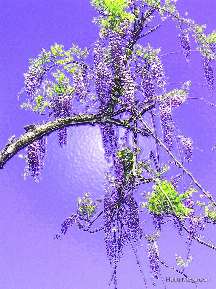 Purple Passion Wisteria by Holly Martinson