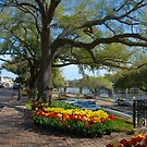 Natchitoches on a Sunday morning in March by Bonnie T.  Barry