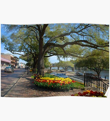 Natchitoches on a Sunday morning in March Poster