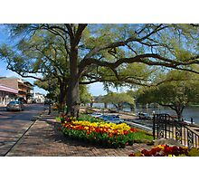 Natchitoches on a Sunday morning in March Photographic Print